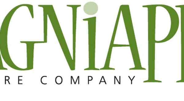 lagniappe-theatre-company_1460746398562.jpg