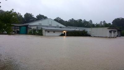 Louisiana-flooding-jpg_20160820173405-159532