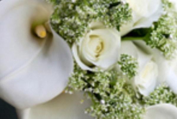 Digital Life 365 - Section Photos - Weddings